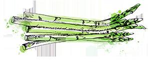 asparagus-small